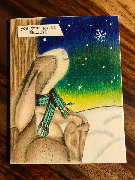 Bunny2017.jpg