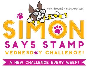 SSS_Wednesday-Challenge-Blinkie-3